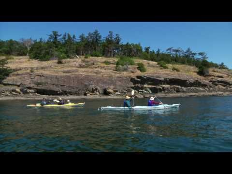 Shearwater Adventures Sea Kayak Tours One Of My Favorite Places In The World And Have Done
