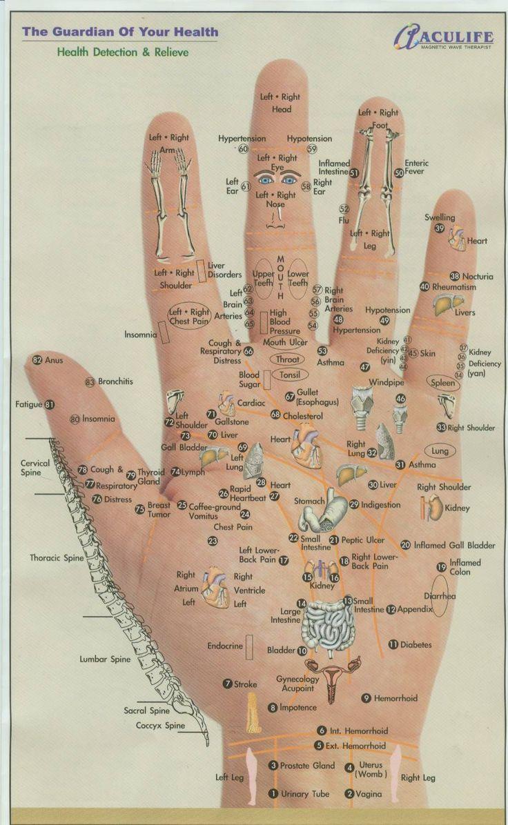 Fast Secrets # http://fastsecrets-clubs.com/alternative-medicine-what-happens-during-acupuncture-treatment/