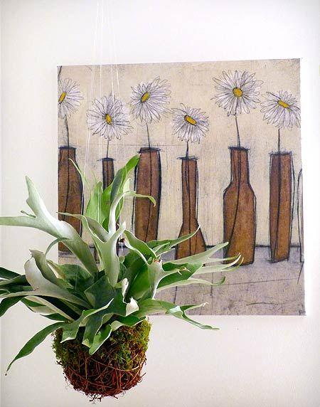 35 Best Indoor Plants Images On Pinterest | Indoor House Plants