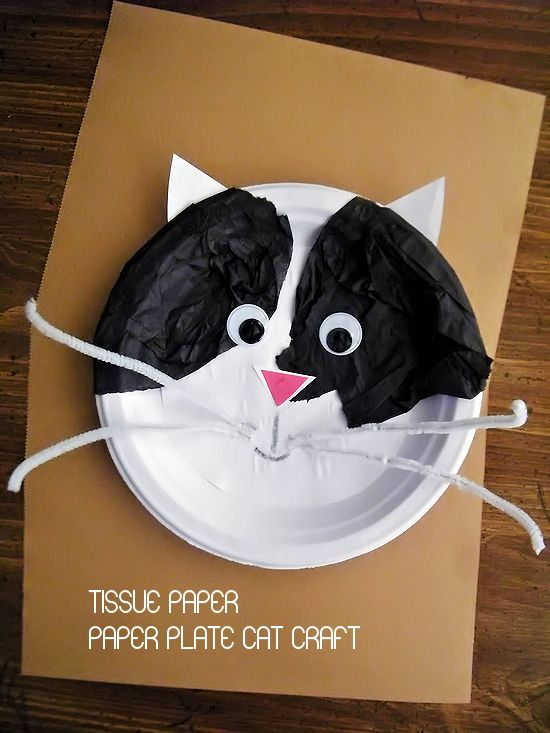 Tissue paper on paper plate cat craft f rskola tips for Cat crafts for toddlers