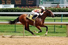 220px-Horseracing_Churchill_Downs.jpg (220×146)