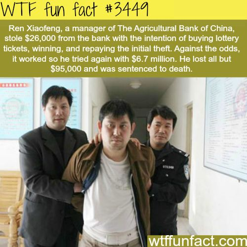 Facts About Laws Intersting Laws Information Facts Funny Interesting Weird Facts