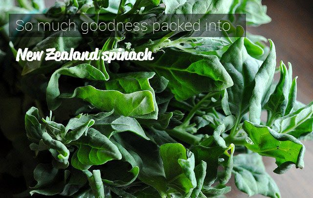 New Zealand spinach is one of the most versatile and healthy options for your next meal.