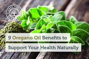 9 Oregano Oil Benefits to Support Your #Health Naturally https://blogjob.com/essentialoilblogs/2017/02/14/9-oregano-oil-benefits-to-support-your-health-naturally/