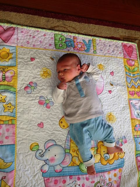 Quilt Babies And Panel Quilts On Pinterest
