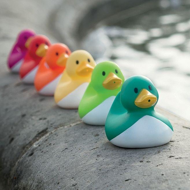 Kaczki zestaw do łowienia zręcznościowa zabawka #Janod #WyjątkowyPrezent #DlaDziecka #NaWiosnę