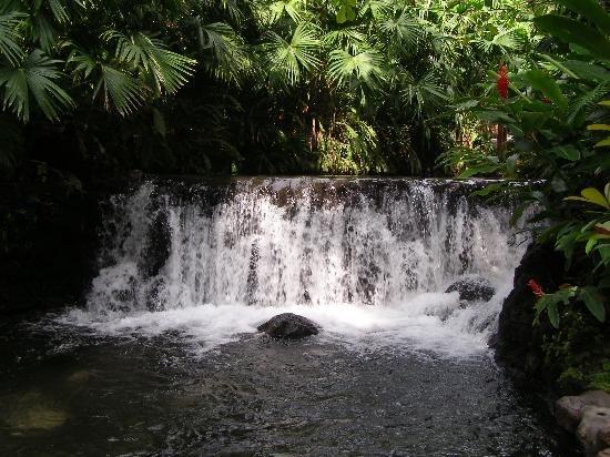 Gulf of Papagayo, Costa Rica: Tabacon Hot Springs