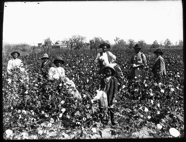 slavery on southern plantation The colonies develop 119 the southern colonies: plantations and slavery main idea why it matters now terms & names 3 one american's story george mason was born to a wealthy virginia family in 1725.