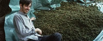 Watch the Ten Best VICE Documentaries About Drugs