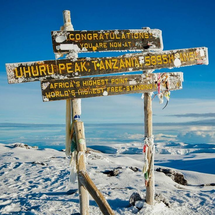 Climbing the highest mountain in Africa is something to add to your bucket list. Only you will be able to describe what it is like to climb to Mount Kilimanjaro's summit. Timbuktu Travel