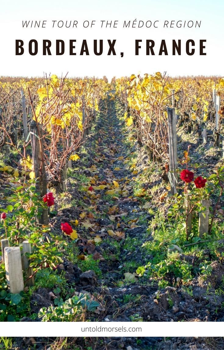 Learn about the terroir, culture and history of wine making and processes unique to the region when you join a Bordeaux wine tour