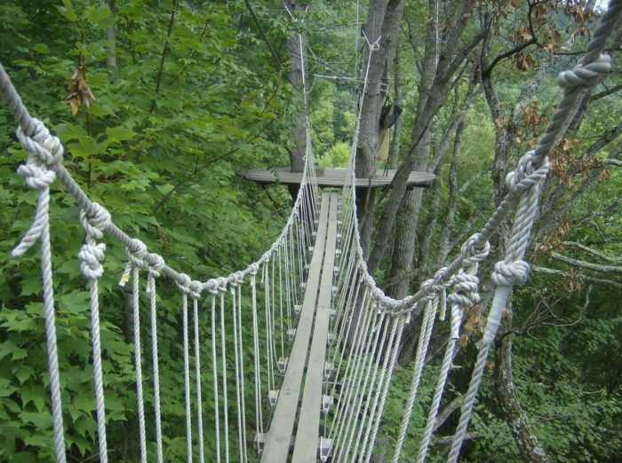 This Canopy Walk In North Carolina Will Make Your Stomach Drop