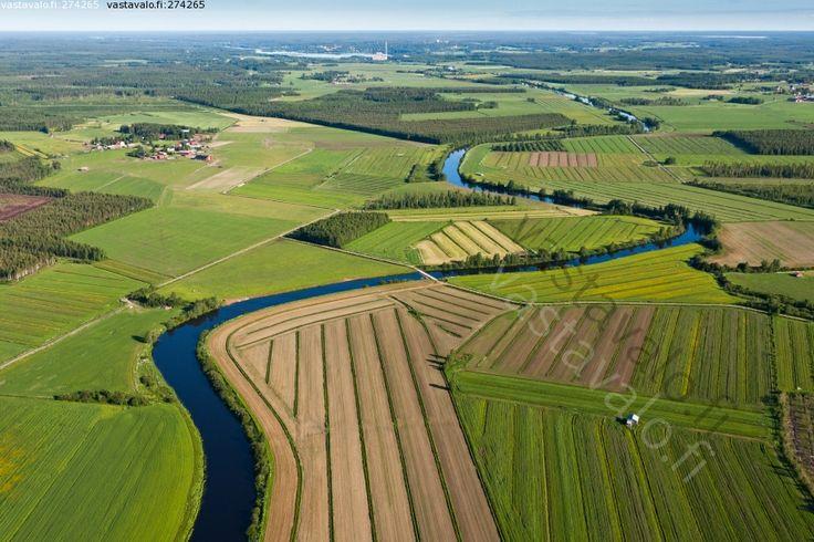 Pohjanmaan joet mutkittelevat tasaisella maalla. Vedet virtaavat hitaasti kohti merta. Ne kuljettavat myös paljon ravinteita ja maaperästä veden mukaan tarttunutta ainesta kohti jokisuuta ja merta.