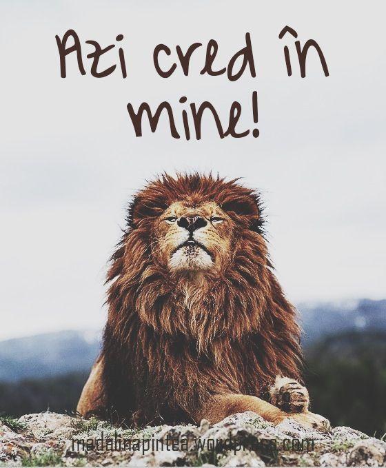 Azi cred in mine!