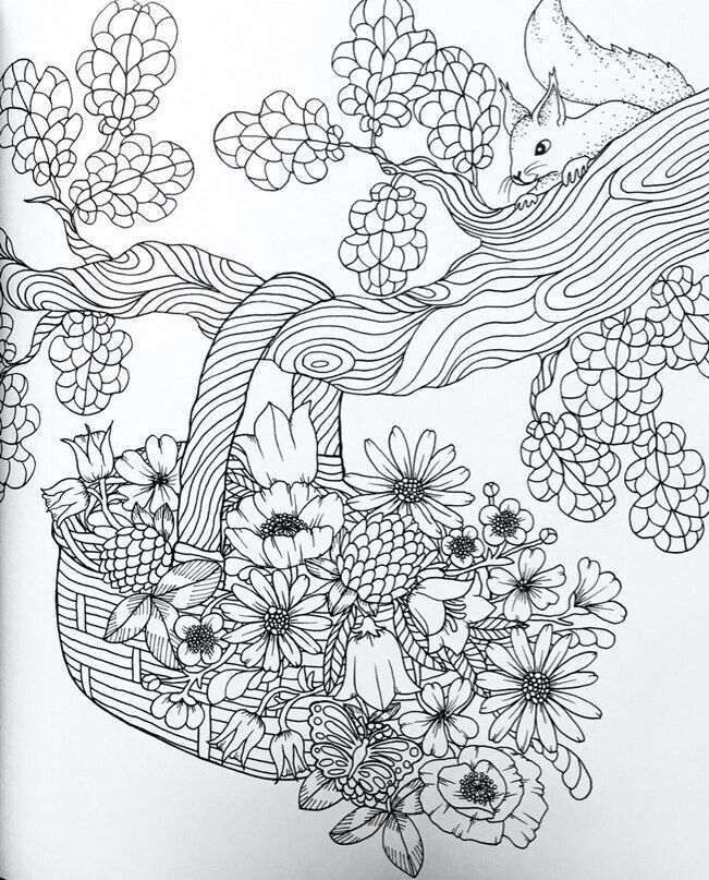 Pin by Rose Meyer on Adult coloring
