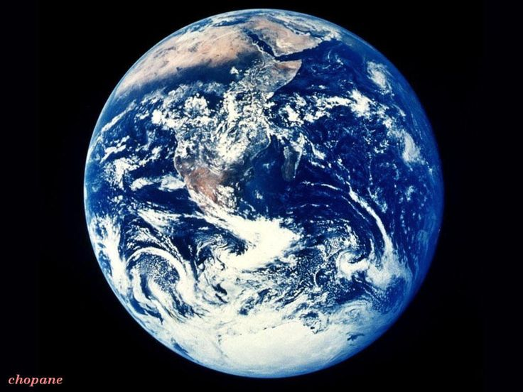 Help the Environment- The Adventures of EcoRilla Episode 1.