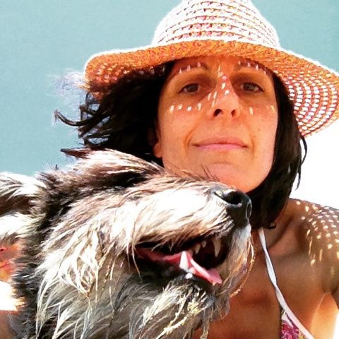 Pink Straw Cowboy Hat from Accessorize. Salt and Pepper Mini Schnauzer.