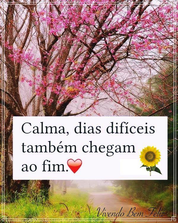 Calma Tudo Vai Dar Certo Ja Deu Tudo Certo Calma Frases