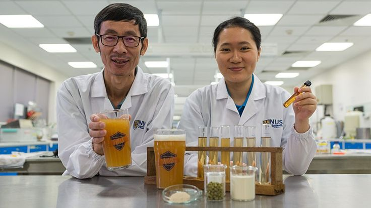 NUS researchers create novel probiotic beer that boosts immunity and improves gut health  incorporates the probiotic strain Lactobacillus paracasei L26 which was first isolated from human intestines and has the ability to neutralise toxins and viruses as well as regulate the immune system.