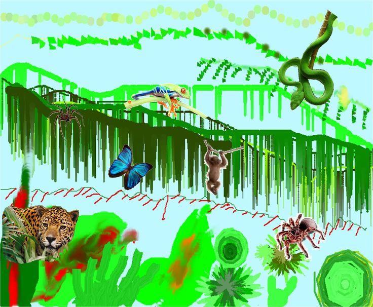 Lucus's Jungle
