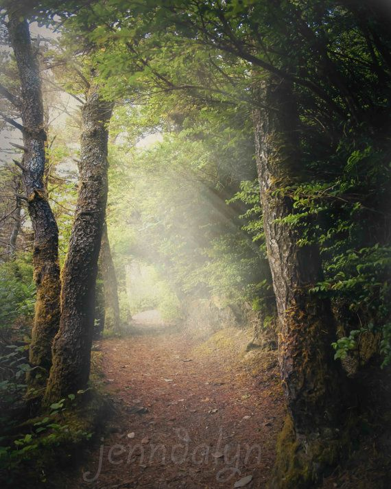 25 Best Ideas About Enchanted Forest Oregon On Pinterest