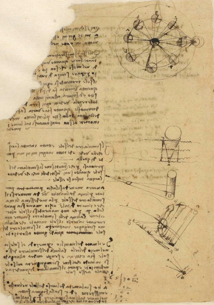 a report on the career and artistic skills of leonardo da vinci an italian polymath In addition to art, leonardo studied a wide range of  di ser piero da vinci was an italian renaissance polymath: painter  of technical skills which, includes .