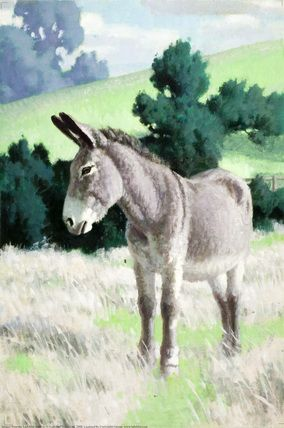 Donkey in a Field by Edward Osmond, 1957