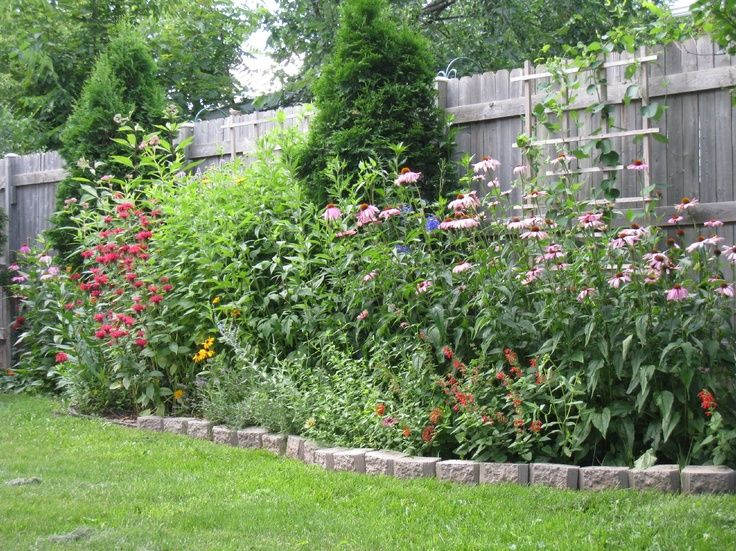 garden ideas along fence