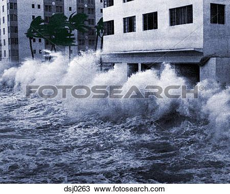 Hurricane winds and storm surge waves blow palm trees and crash into hotels on Miami Beach during Hurricane Betsy in 1965. Description from fotosearch.com. I searched for this on bing.com/images