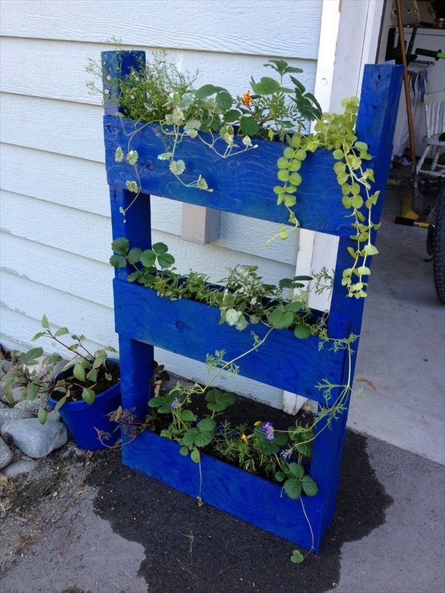 1000 images about diy pallets on pinterest picket for Recycle pallets as garden planters