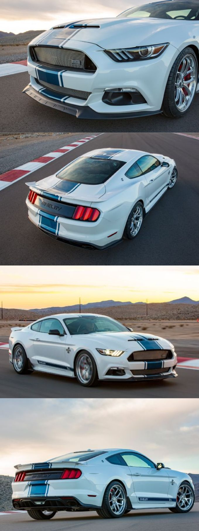 Shelby White The Blog Of: 17 Best Ideas About Super Snake On Pinterest