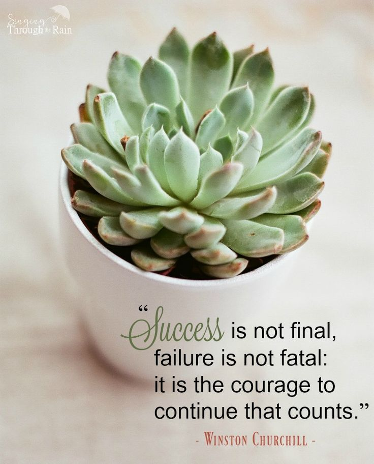 Inspirational Quotes About Failure: 1000+ Inspirational Military Quotes On Pinterest