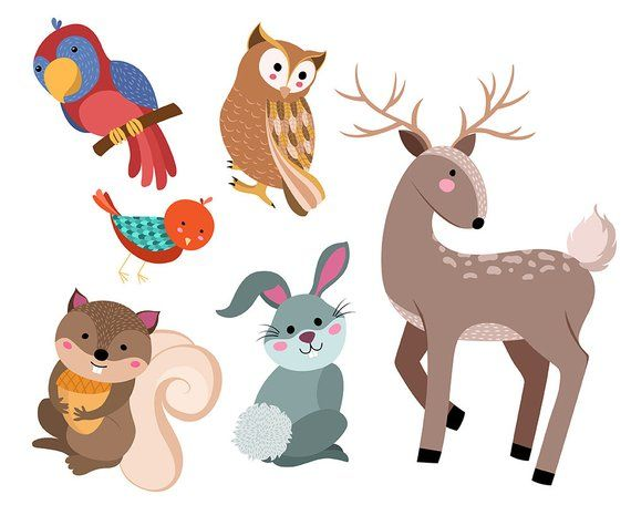 Cute Animals Clip Art Set Of 16 Hand Drawn 300 Dpi Vector Etsy How To Draw Hands Cute Animals Animal Design