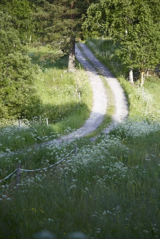 meadow <3