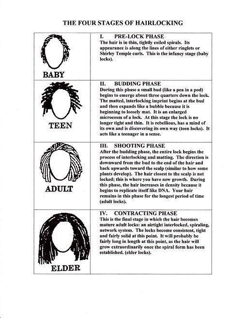 The Stages of Locs - im in the shooting phaae