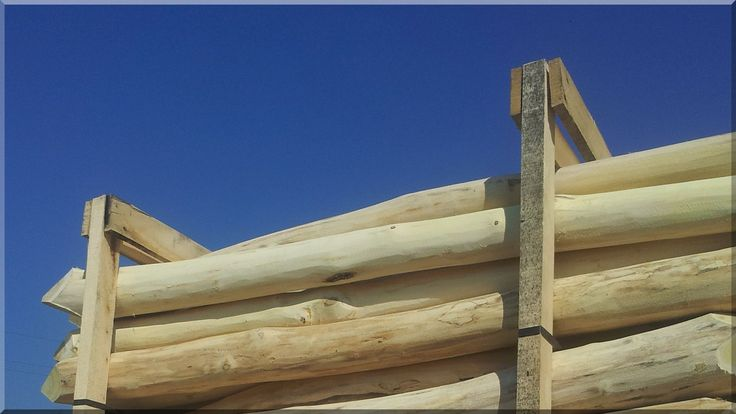 Csiszolt akácfa oszlopok rönk támfalak, rönkbútorok építéséhez