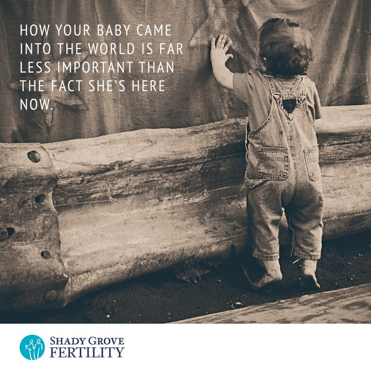 Egg donation provides a brand new opportunity to becoming a parent #eggdonation #Infertility #IVF