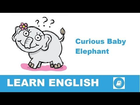 Learn English - Short Stories - Curious Baby Elephant - E-ANGOL