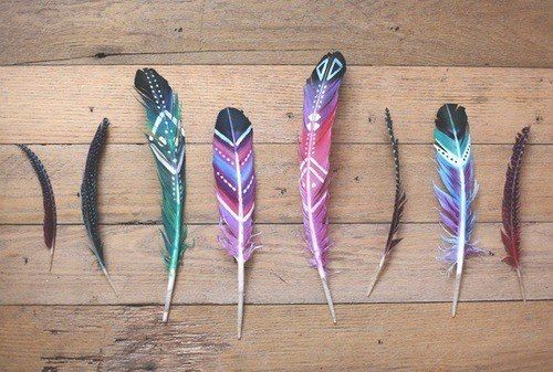 painted plumes