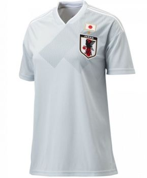 2018 World Cup Women Jersey Japan Away Replica Grey Shirt  BFC973 ... 2cd34ccca