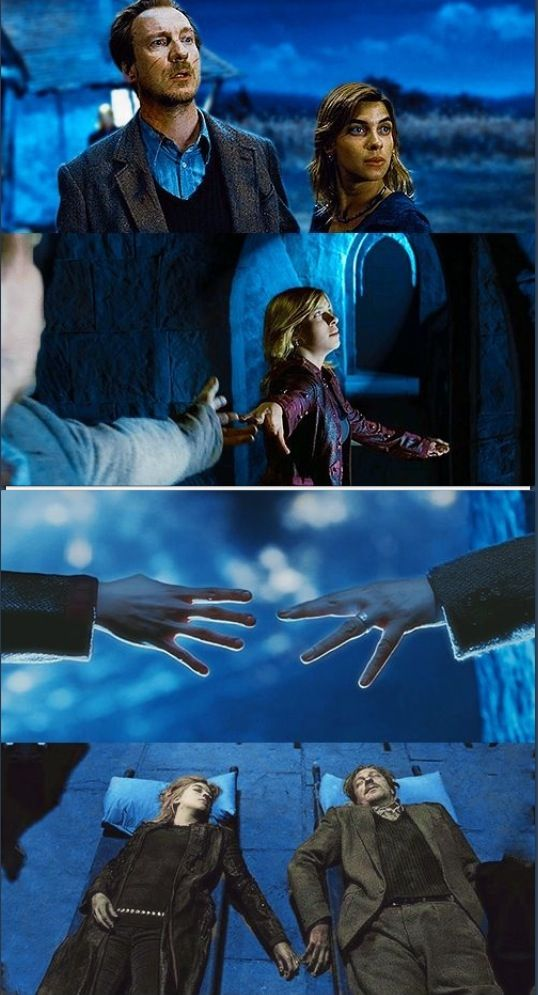 Remus Lupin and Nymphadora Tonks ~ Harry Potter