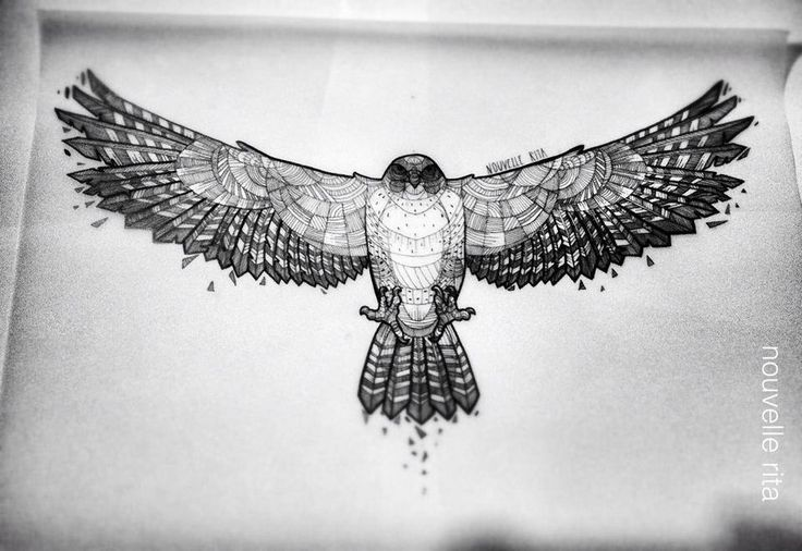 Hawk ~ artist Nouvelle Rita #art #illustration PERFECT FOR A STERNUM/UNDER BREAST TATTOO