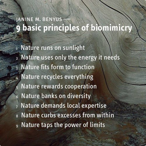 """""""Nature runs on sunlight, uses only the energy it needs, fits form to function, recycles everything, rewards cooperation, banks on diversity, demands local expertise, curbs excesses from within, and taps the power of limits.""""  ~ Janine Benyus"""