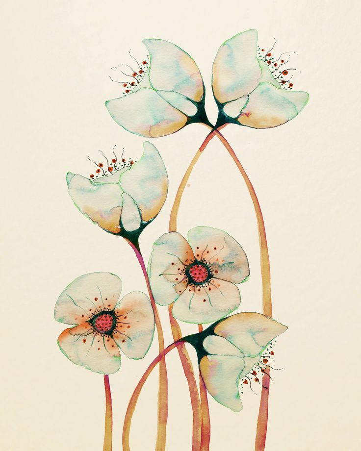 """Imagined Botanicals 12"""" x 16"""". £25.00, via Etsy."""