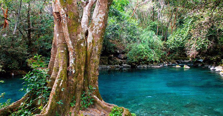 Poza Azul del Ejido de Santa Ana