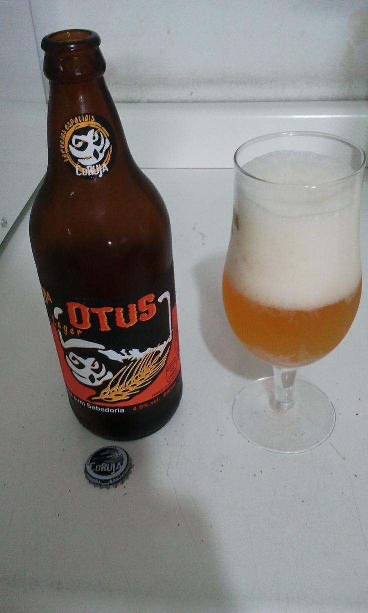 Otus Coruja