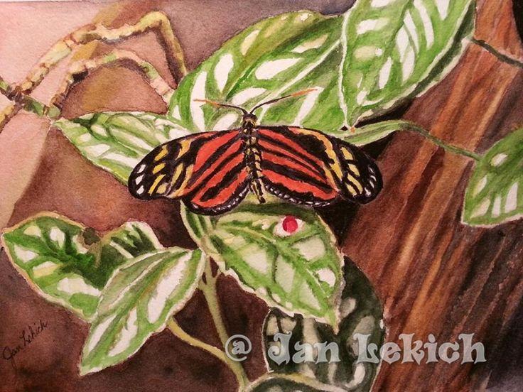 Watercolor on Garzapapel 9x12 by Jan Lekich