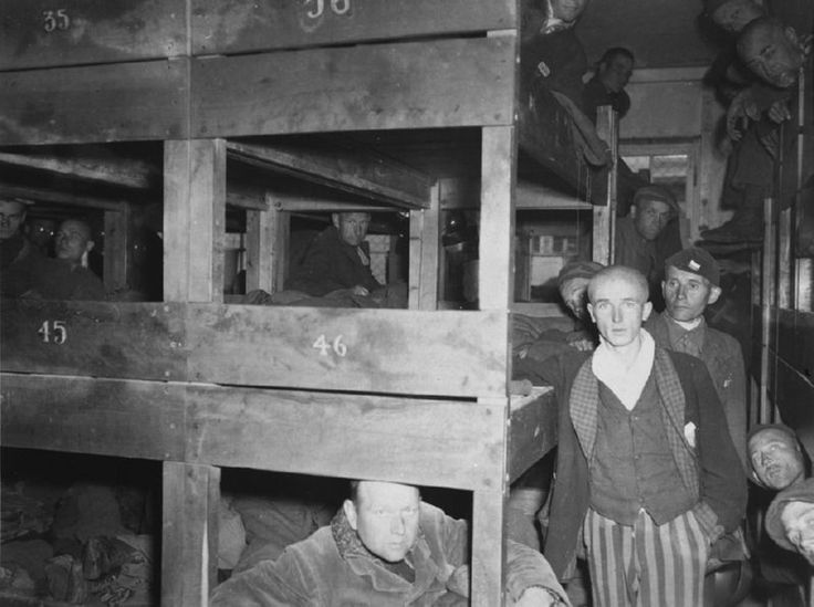 an introduction to the history of concentration camps Introduction & overview of revised chronology  while many of the victims were selected at concentration camps,  a history of the nazi concentration camps by.
