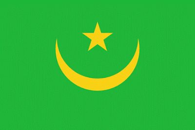 This is the flag of Mauritania.It is a country.