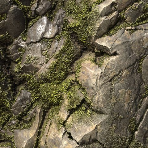 Rock & Moss - Procedural Material, Pierre FLEAU on ArtStation at https://www.artstation.com/artwork/KRVky